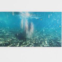 2. Agua_Photo_Fiorella Angelini_2021.jpg