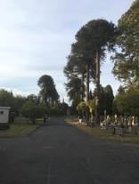 Charminster Cemetery, Bournemouth.jpeg