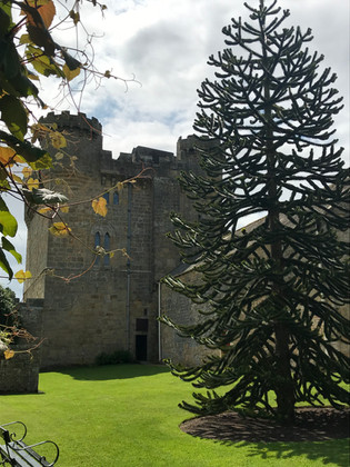 3 Belsay Hall Castle and Gardens Newcast
