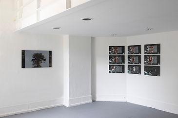 Araucaria Project B_ground floor_img_0352 copy.jpg
