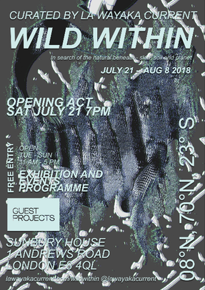 From 21st July - 'Wild Within' exhibition