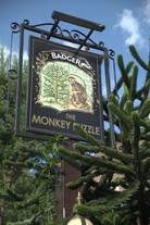 The Monkey Puzzle Pub 30 Southwick Street Paddington. Rodrigo Fernandez