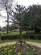 Worth Park, Crawley. Kevin Conway