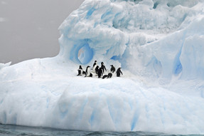 Discover Chilean Antarctic