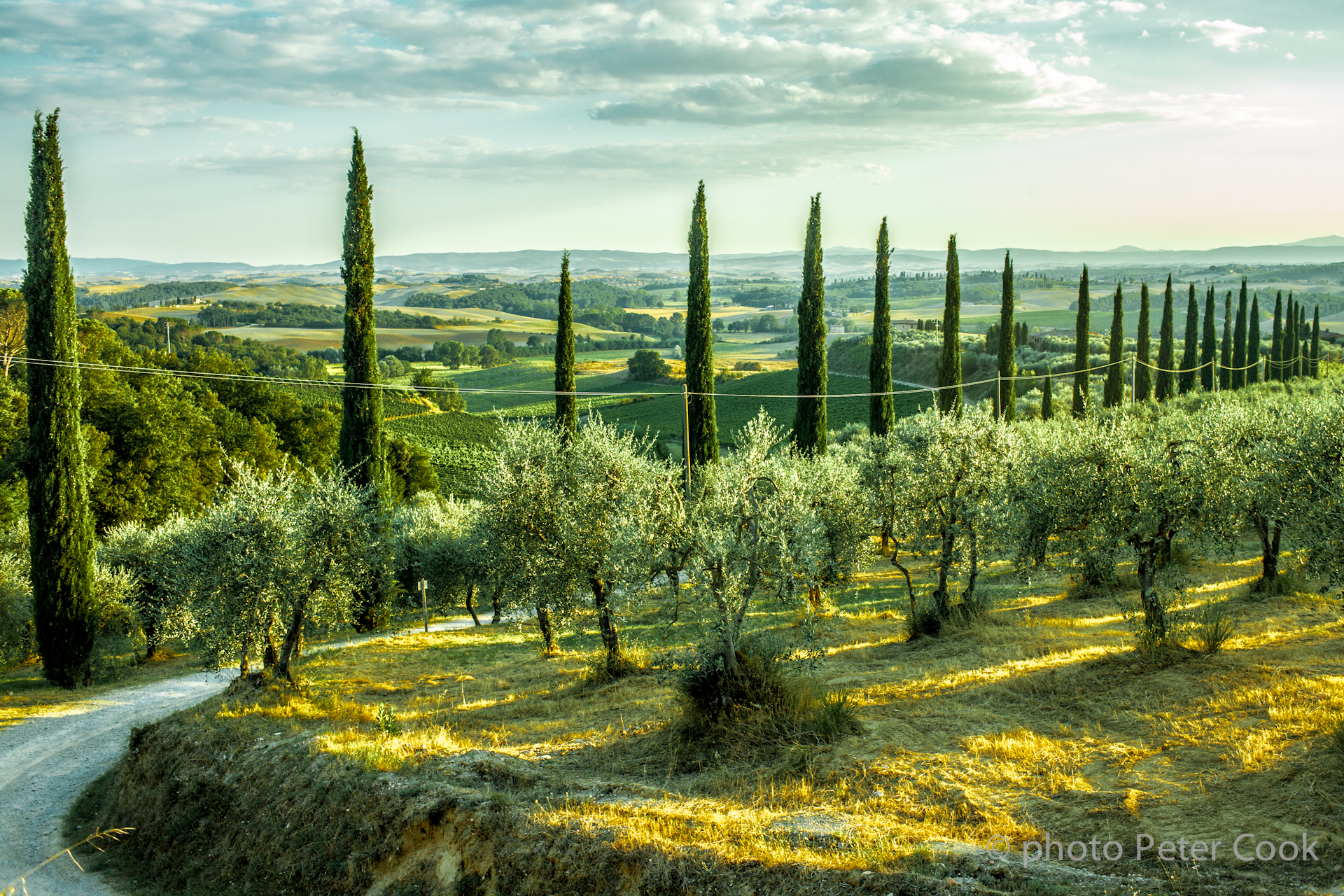 Tuscan 2.jpg