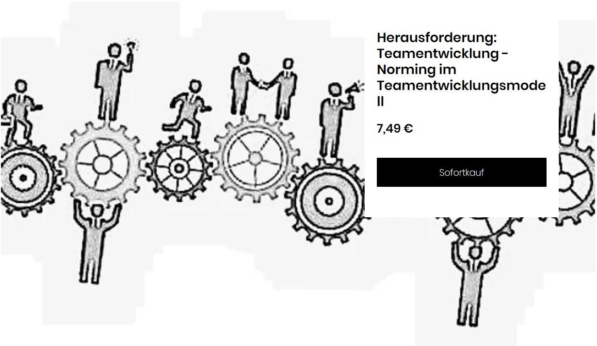 Teamentwicklung III Norming.jpg