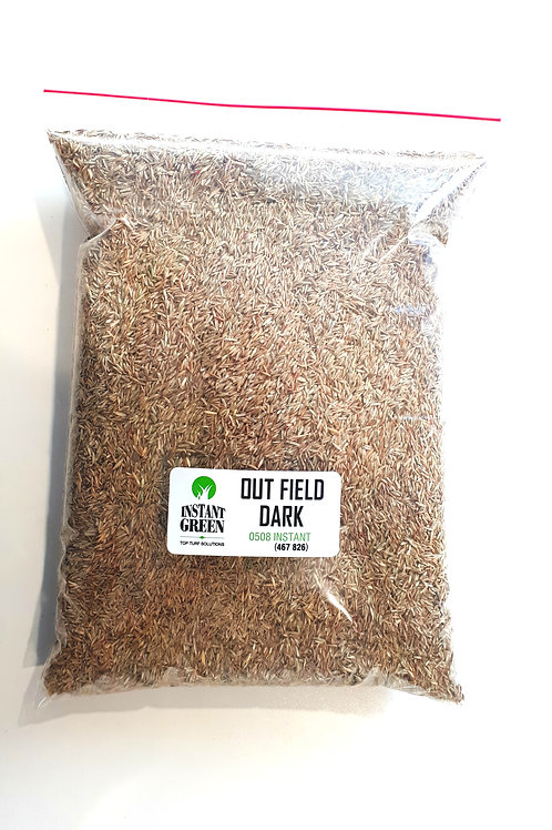 Outfield Dark Lawn Seed