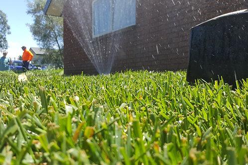 25kg Yorker Lawn Seed
