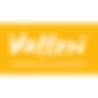 logo vallori site_v2_350.png