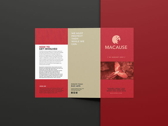 Macause_BrochureMockup2 copy.jpg