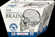 C502406 The Pyromaniacs Brain.png