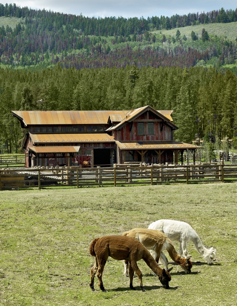 4 lazy J Ranch - Shadow Mountain, CO