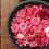Thumbnail: Camellia Invicta