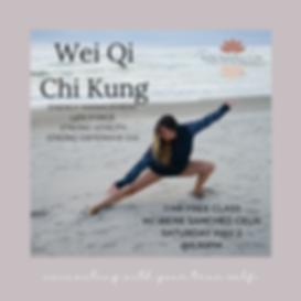 Wei Qi Chi Kung.png