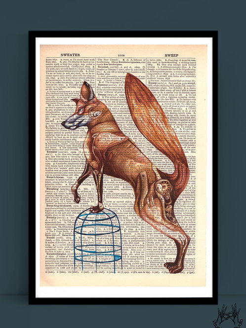 Foxy print on dictionary page