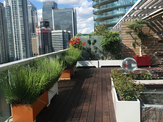 Terrace Cleaning Services In London