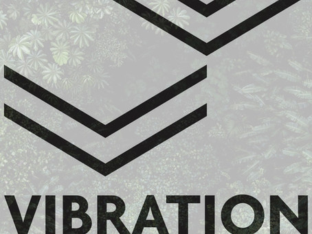 Les traducteurs de langue russe de Vibration éditions