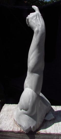 Adam's Arm