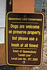 Dog Sign .JPG