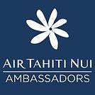 ATN_Brandmark_logo_AMBASSADORS-512x512.j