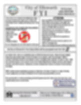 FYI Flyer-page-001.jpg