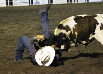 No 3 Steer Wrestler IMG_1211 (2).jpg
