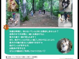 秋もやります!第3回お散歩withわん!