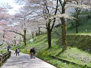 お散歩with わん♪ 残り3名です!