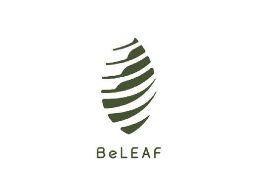 「相信葉子生活事業有限公司」來自屏東高樹鄉的優質茶樹精油