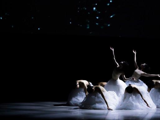 「 丞舞製作團隊 B.DANCE」舞出自我的時代定位與價值
