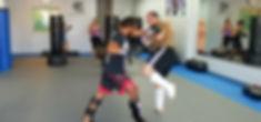 MMA boxing kickboxing fight bareknuckle muay thai karate cardio workou fitness punch kick