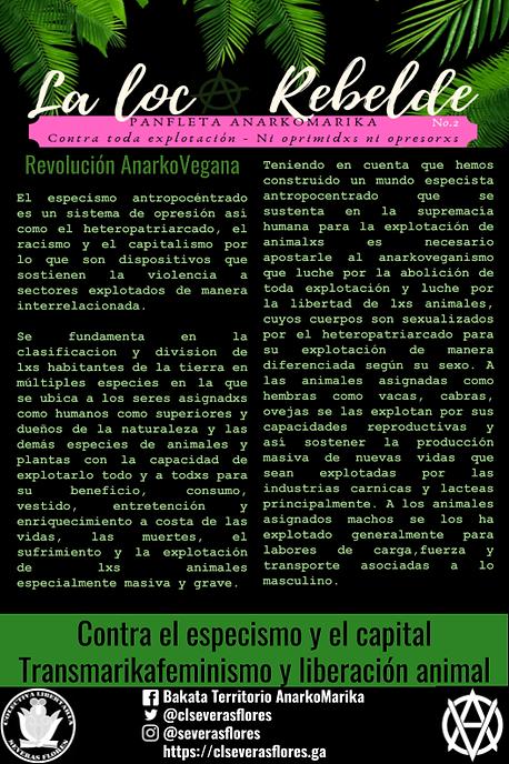 Panfleta 2 (2).png