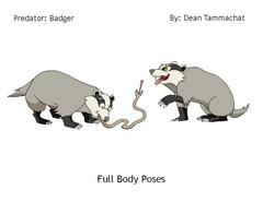 Badger: Predator (Posing)