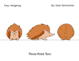 Hedgehog: Prey (Turnaround Sheet)