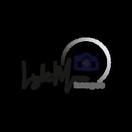 LMI_Logo_edited.png