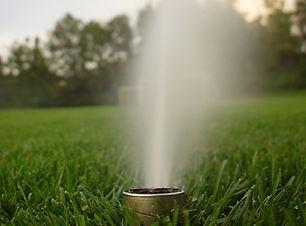 lone-sprinkler-1495154-639x852_edited.jp
