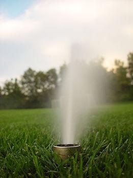 lone-sprinkler-1495154-639x852.jpg