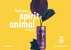 spirit animal