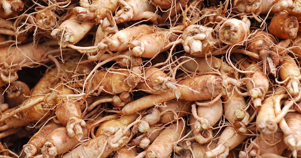 Ginseng-root-health-benefits-stack