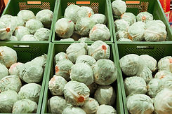 boxes-of-fresh-cabbages-in-a-supermarket