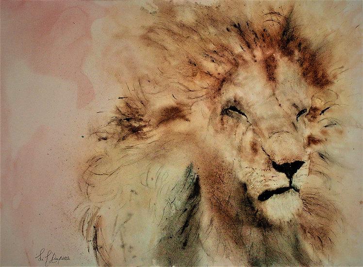Le lion du Serengeti