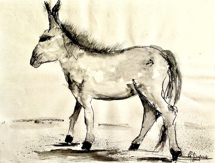 Le petit âne#2