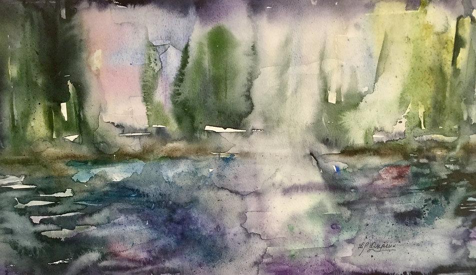 Brume sur le marais