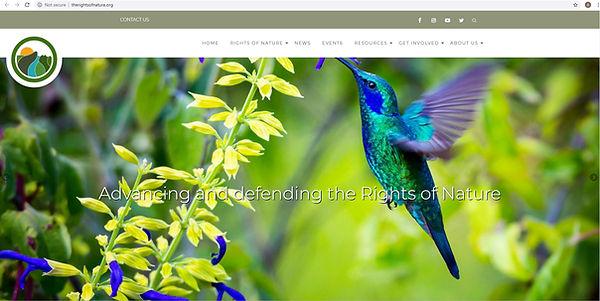 ron-website.jpg
