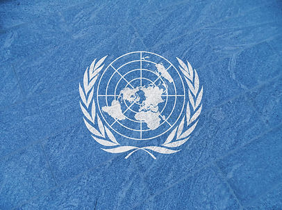 Flag of the United Nations.jpg