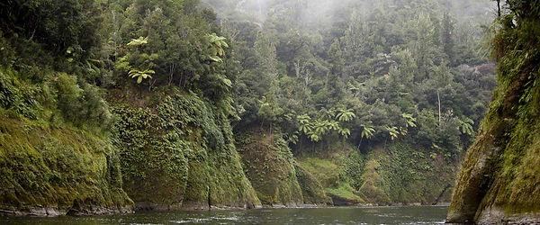 9 Whanganui-.jpg
