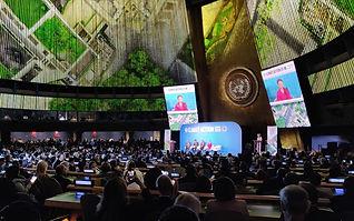 UN summit.jpg