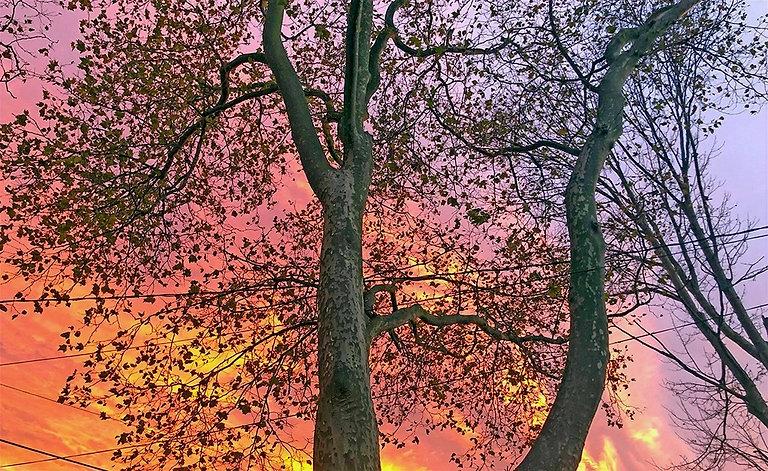 Sunset-Belmar-NJ_3006_edited.jpg
