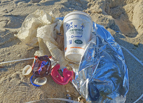 Taking Aim At Plastic Pollution OnBelmar Beach