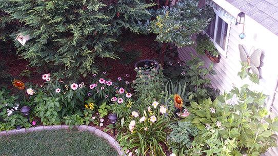 Our Gorgeous Gardens